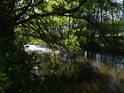 Romantické zákoutí Chrudimky nedaleko Topolu.