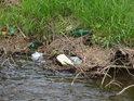 Na naplaveniny plné plastových lahví, igelitu a polystyrenu se oko milovníka přírody dívá jen nerado.