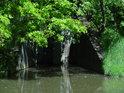 Kanalizační výpusť do Chrudimky nedaleko produktovodního přemostění nad Nemošicemi.