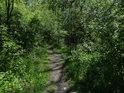 Nenechme se zmýlit, jsme na useknutém mostě přes Chrudimku u Pardubiček.