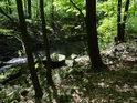 Chrudimka protéká chráněným územím Krkanka.