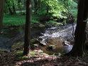 Chrudimka v lůně chráněného území Strádovské Peklo je jen stěží přístupná.