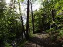 Cesta po pravém břehu Chrudimky od Svídnice na Škrovád.