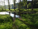 Fotografie řeky Chrudimky, od pramene až po soutok s řekou Labe ve městě Pardubice