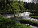 Jez na řece Chrudimce v Pasekách je za jarního Slunce velice krásný.